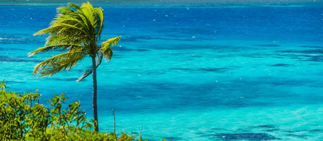 caribe de hoje
