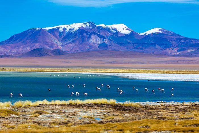 paisagem no deserto do atacama