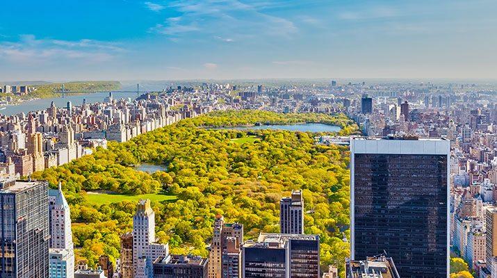 cidade de nova york